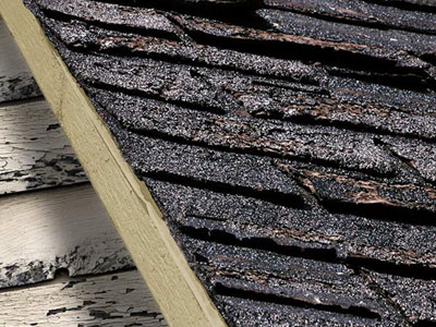 Acker Roofing Inc. Images